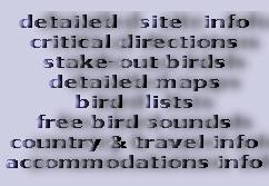Birding2asia  Free downloadable bird sound recordings from Asia